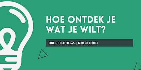 Online Bloeiklas: Hoe ontdek je wat je wilt? tickets