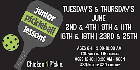 Junior Pickleball Lessons tickets