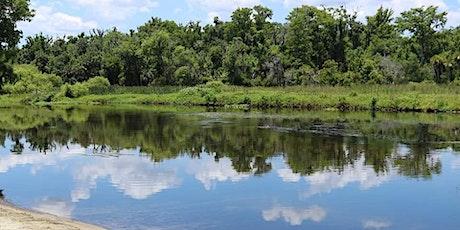 Lower Wekiva River Paddle tickets