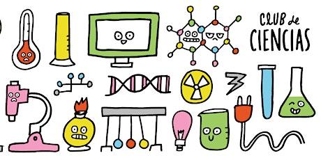 Preguntas Investigables y Diseño de Experimentos en la Escuela entradas