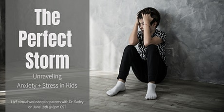 The Perfect Storm - Unraveling Anxiety + Stress in Kids: A Virtual Workshop tickets