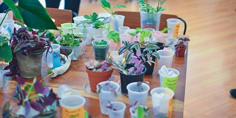 San Francisco Summer 2020 Plant Swap tickets