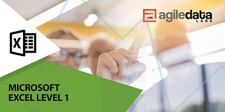 Microsoft Excel Level 1 - Live Online (2 Days) tickets