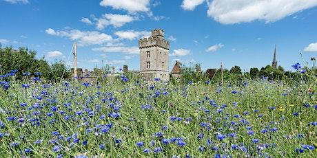 Visit Lismore Castle Gardens - June tickets