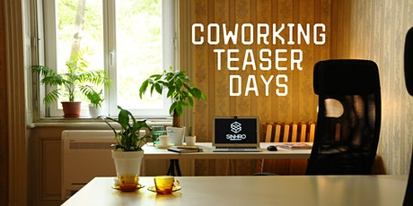 Coworking teaser days tickets