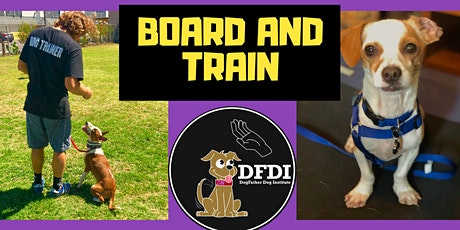Board and Train Puppy Training  tickets