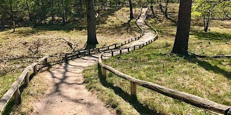 Wandertag für Einsteiger: Greven - Guntruper Heide - Rieselfelder - 21,4km, Hm: 71 Tickets