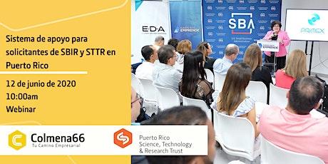 Sistema de apoyo para solicitantes de SBIR/STTR en Puerto Rico entradas