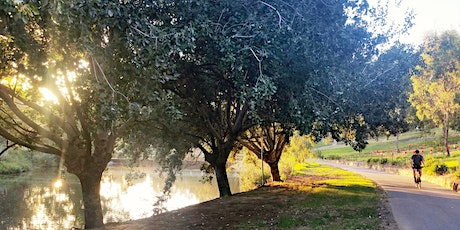 Guided Walk through Bonython Park / Tulya Wardli (Park 27) tickets