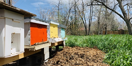 Apiary Tours with The Peoples Bees tickets