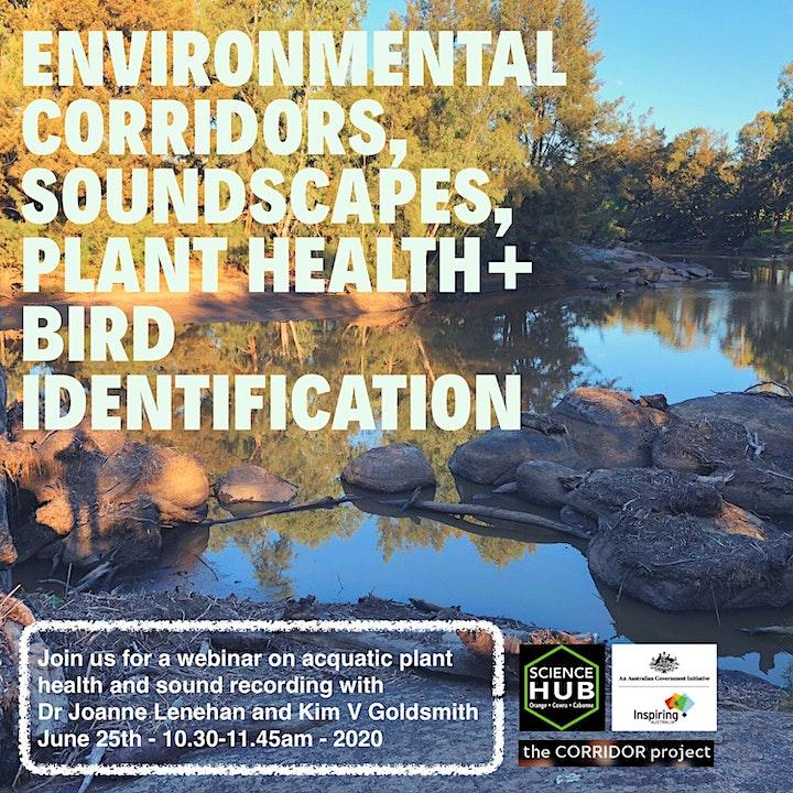 Environmental corridors, soundscapes, plant + bird identification image