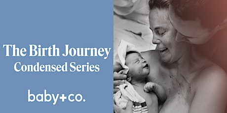 Birth Journey Childbirth + Early Parenting 2-Week Virtual Class 7/18-7/25 tickets