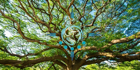 Tree of Life Dance & Breathe tickets