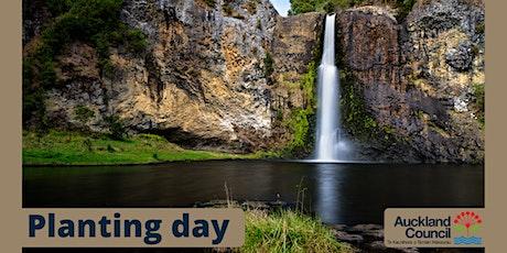 Hunua Falls planting day tickets