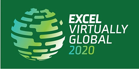 Excel Virtually Global - A Virtual Excel Summit tickets