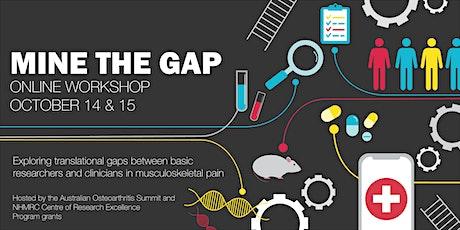 Mine the Gap Workshop tickets