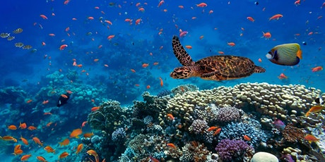 Biosphere 2 Virtual World Ocean Day Webinar: Solutions for Reef Resilience tickets