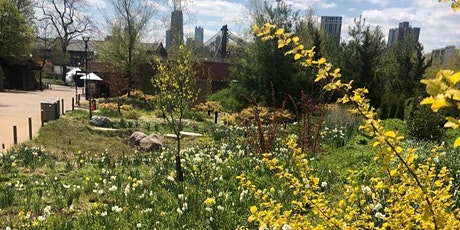 Virtual Gardening with Lincoln Park Zoo tickets