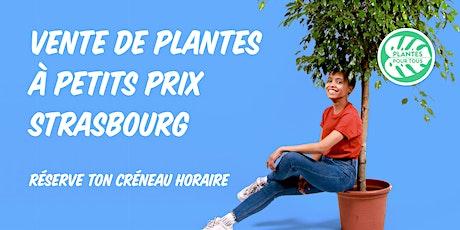 Vente de Plantes à petits prix - Strasbourg billets