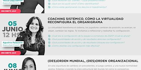 Coaching sistémico - Cómo la virtualidad reconfigura el organigrama entradas
