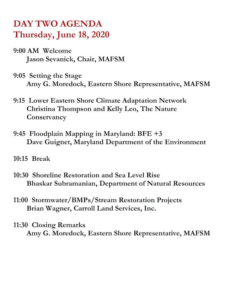 MAFSM 2020 Spring Virtual Conference image