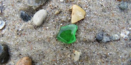 Strandens Skjulte Skatte - Vores Natur tickets