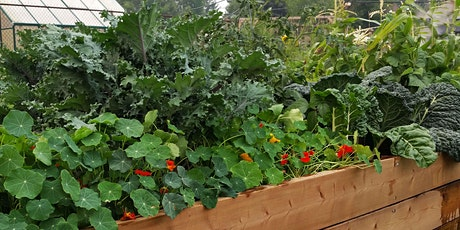 Beyond Kale- Taking the Edible Garden Into the Summer! tickets