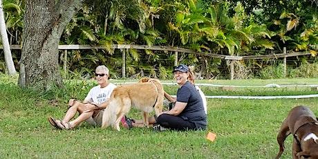 Dog Fun Day at the Goat Farm! Play 'n Train Workshop tickets