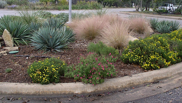 Sustainable Landscapes by Eco Centro image