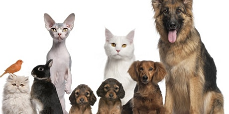 Pet Loss Support Group Workshop tickets