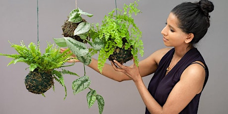 Online Kokedama (sustainable moss garden) class. We'll post you the kit! tickets