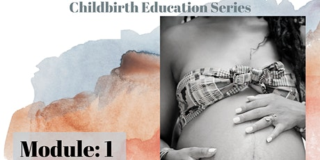 Childbirth Classes: Foundation for Coping & Physiology of Birth (Module 1) tickets
