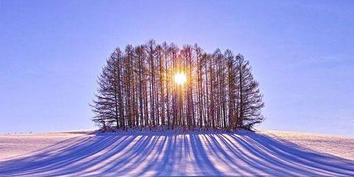 Healing Gifts of Winter