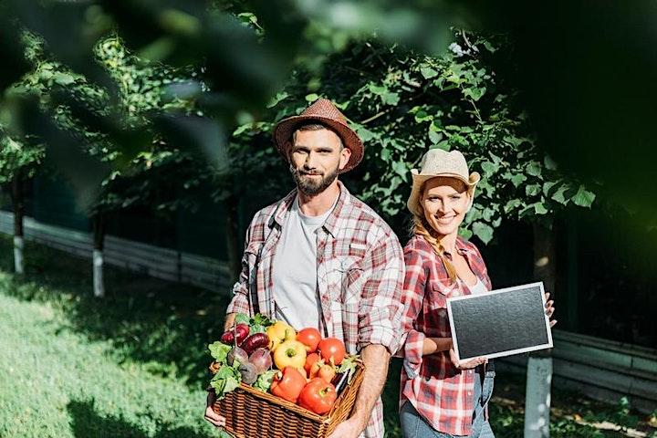 Imagen de Curso de Agricultura Sustentable