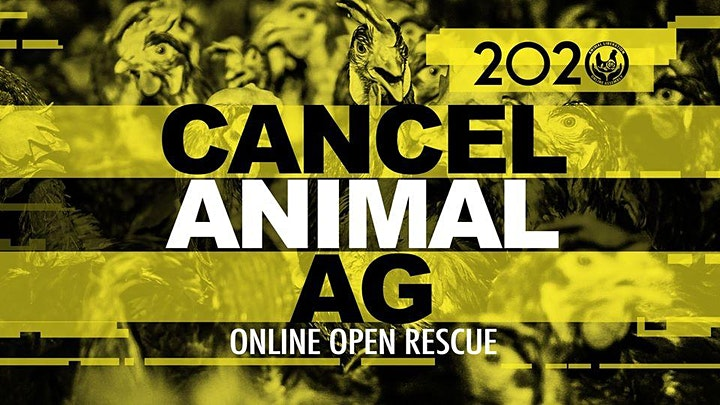 Animal Liberation Online Assembly image