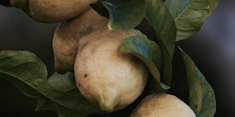 Organic Gardening Basics - Fruit trees and pruning tickets