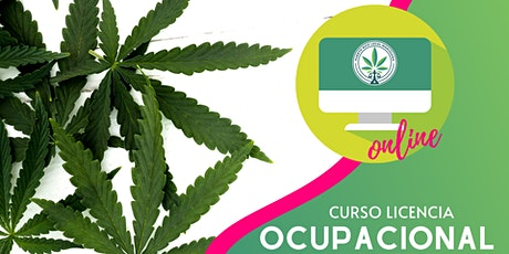 (ONLINE) Curso Licencia Ocupacional |10:00 a.m. tickets