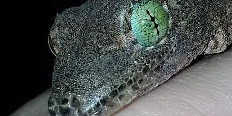 Show Me Reptile & Exotics Show (Paducah KY) tickets