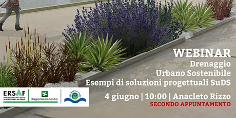 Drenaggio Urbano Sostenibile - esempi di soluzioni progettuali biglietti