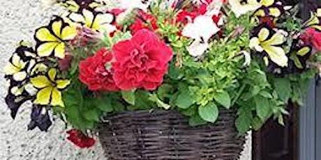 Hanging Basket Drive Thru Aycliffe  Group tickets