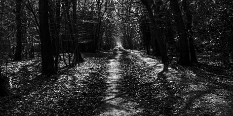 THE EPPING FOREST INTERACTIVE GHOST WALKS, ESSEX tickets