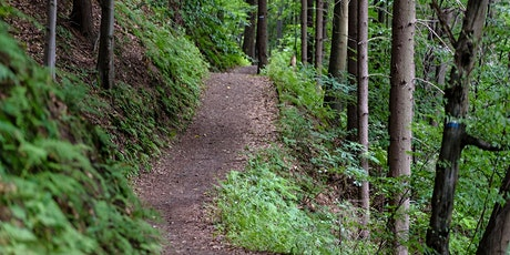 Guided Trail Hiking Group at Quarry Hill-July tickets