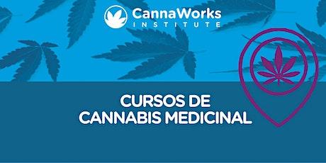 ONLINE | Cannabis Training Camp | CannaWorks Institute entradas