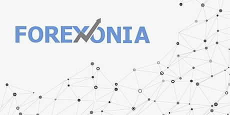 Forex трейдинг для новичков. Бесплатный вебинар tickets