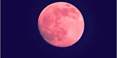 June Full Moon Integration Meditation tickets