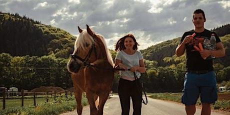 Adult Horse Camp 2.0 - Wellness Workshop tickets