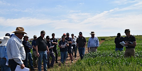 2020 Irrigated Cropping Council Field Day tickets