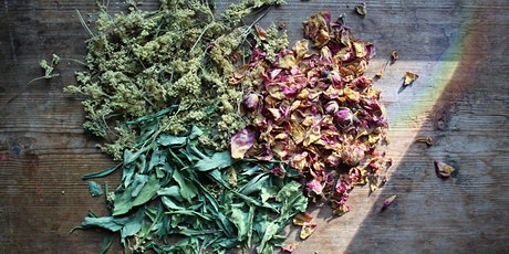 Plant Spirit Medicine: A Ritual and Journey tickets