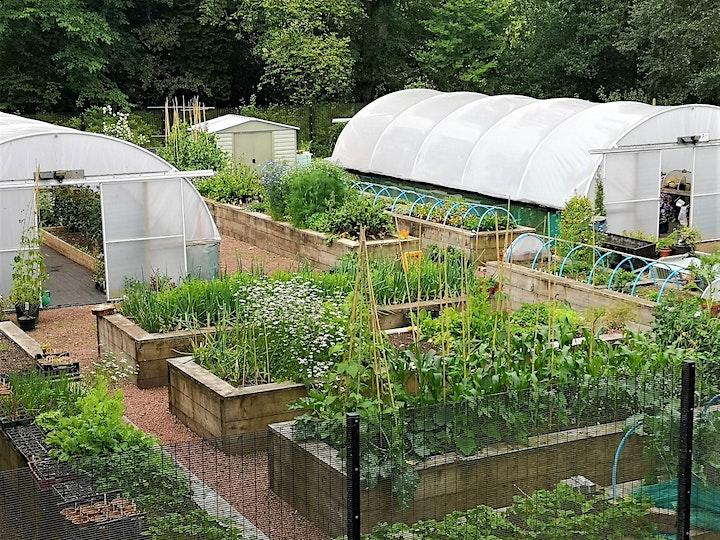 Sustainable gardening for wildlife - Ready, Set, Garden! image
