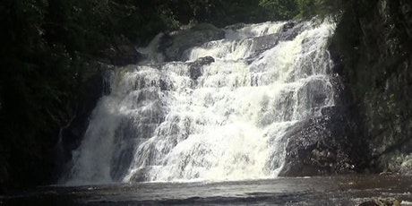 GWHTN Official Event: Beginners hike at Laurel Falls tickets
